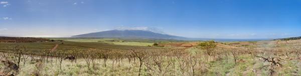 PanoramicView