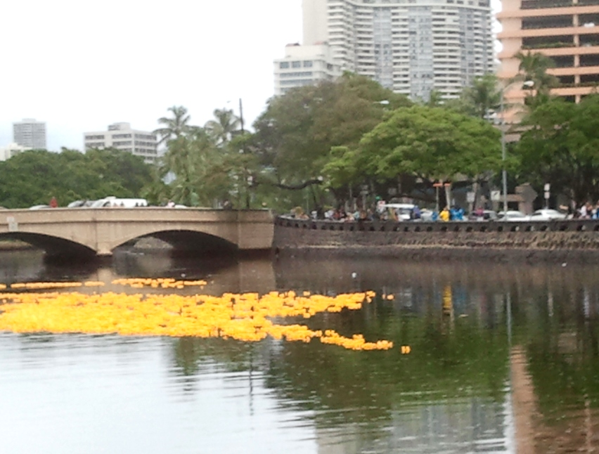 20,000 yellow duckies released, a blur in the rain with 2 leaders, so far!