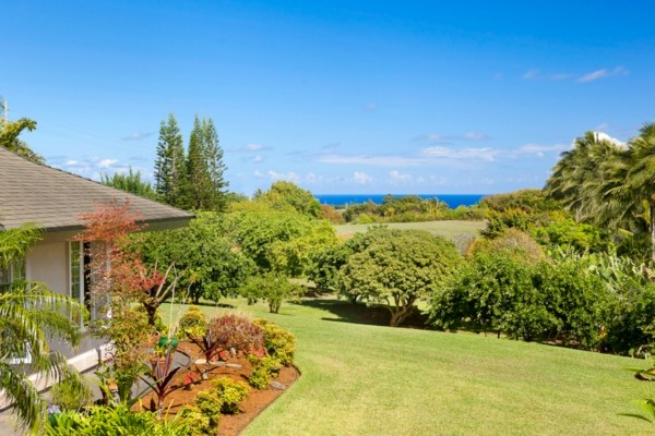 Ocean view kilauea home with commercial white pineapple for Kauai life real estate