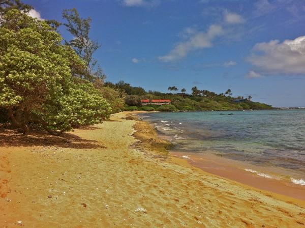 Sandy Beach in Kauai