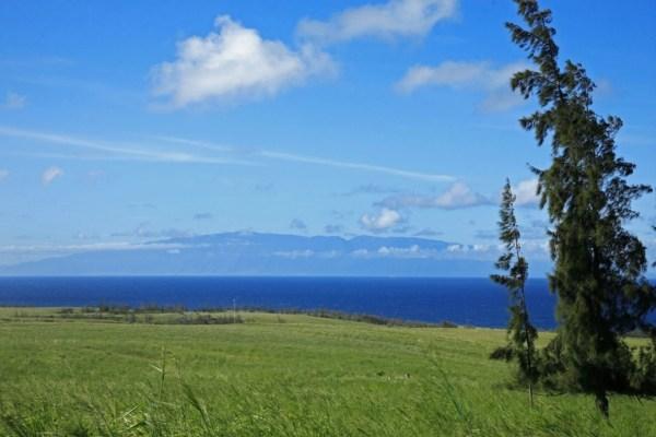 Subdivision acreage near Hawi 119 acres