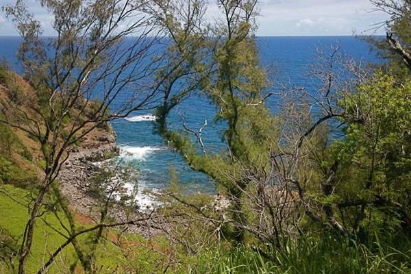 Oceanfront acreage for sale Kohala