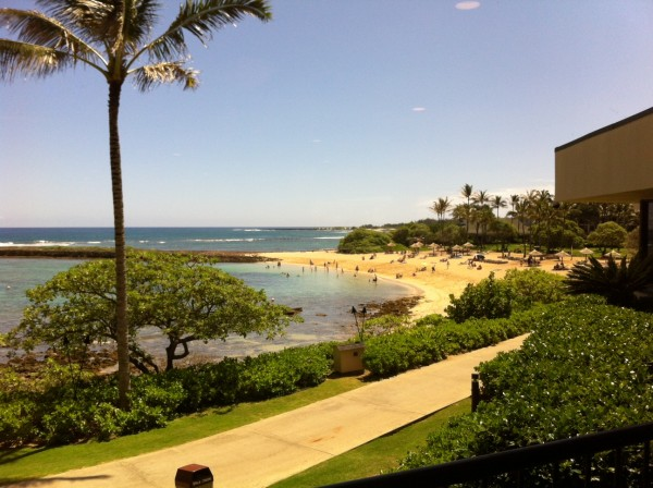Turtle Bay the Day of Concierge Auction on the North Shore