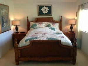 DR Horton Hawaii Kai Master Bed