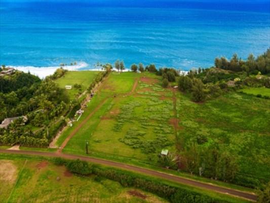 Kauai land for sale the ultimate 39 secret beach 39 ocean for Kauai life real estate