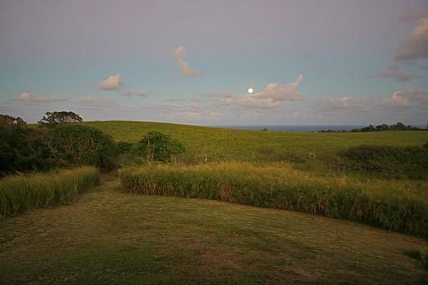 ainakea makai 20 acre ocean view lot for sale North Kohala