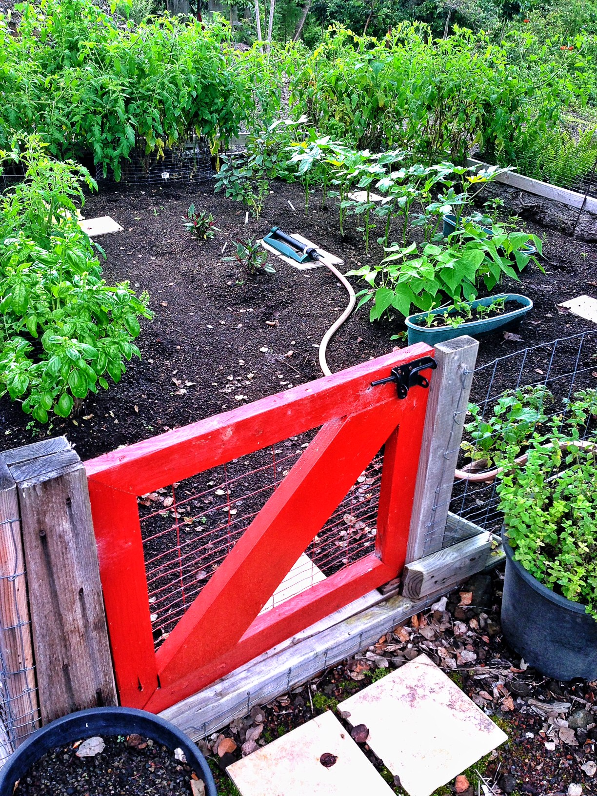 Gate Into The Garden Is A Must!