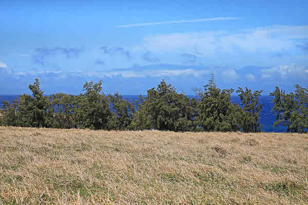 Near oceanfront 20 acre lot for sale with Maui view