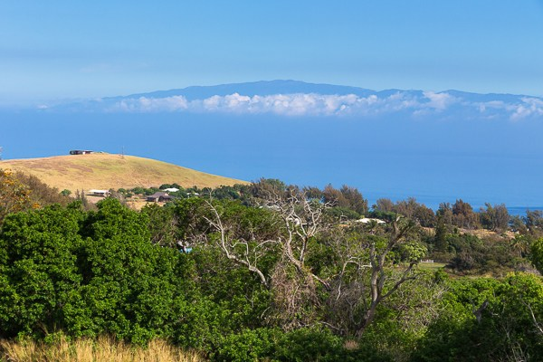 Hawi Ocean View Estate