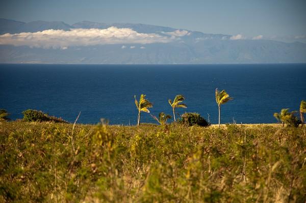 Maui view from Puuepa Ranch Near Hawi