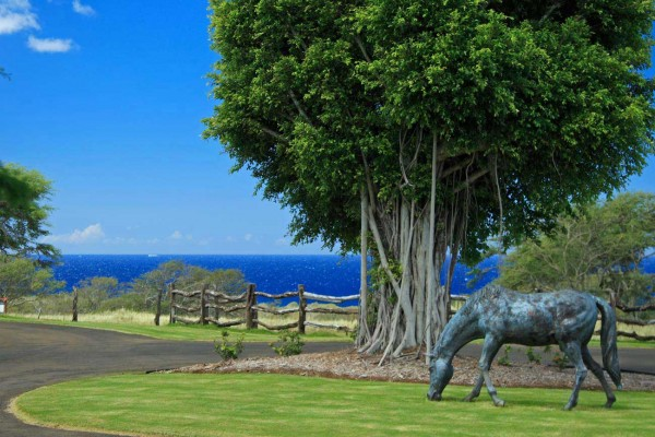 Ranch at Puakea lots for sale Hawi