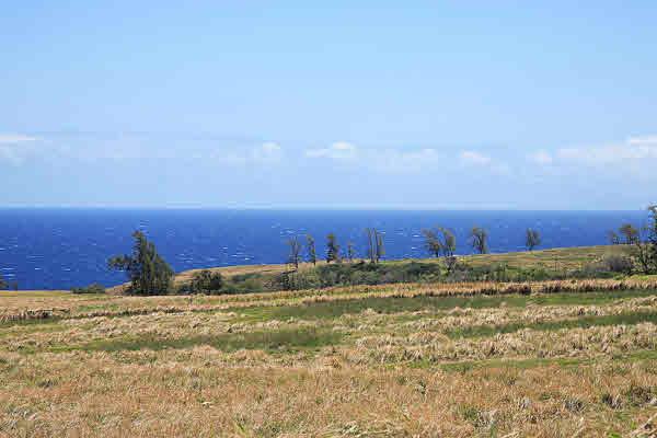 almost oceanfront pahoa beach estates hawi