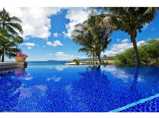 Infinity edge pool with coconut trees swaying above...self-expla