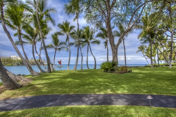 Hawaii Oceanfront Auction - grounds