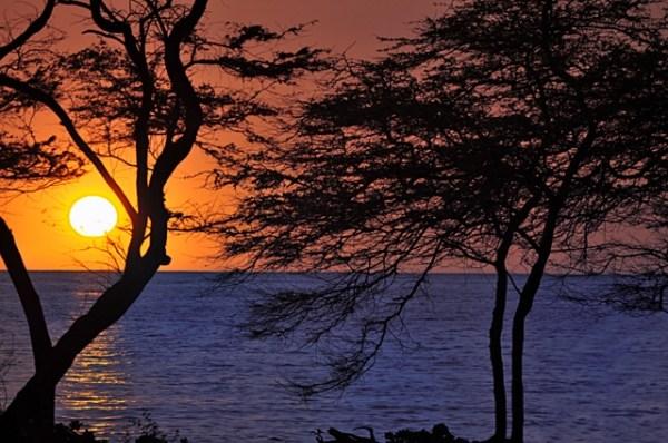 Abay Sunset