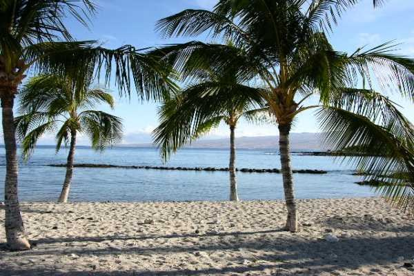 pauoa beach