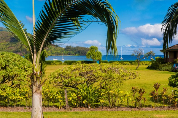 1018537_Hanalei-Bay-Ocean-View_high
