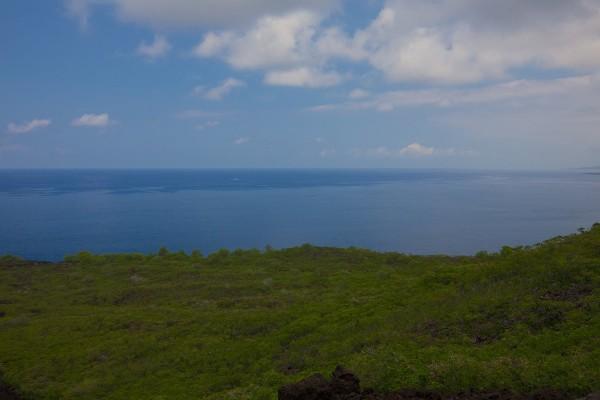Ocean views of coastline