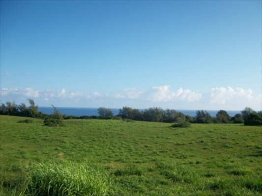 Halaula 100 acres for sale with ocean view