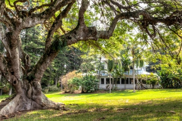 Plantation House B&B for sale in Hawi