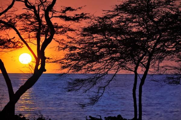 Ocean & Sunset View Kolea Lot 5