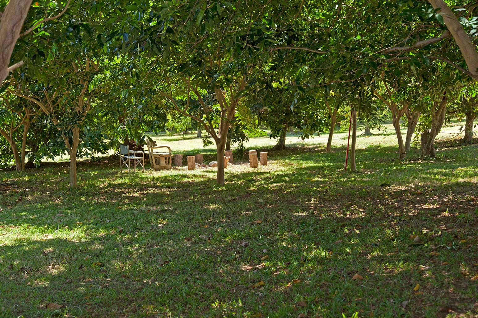 Makapala home with farm for sale