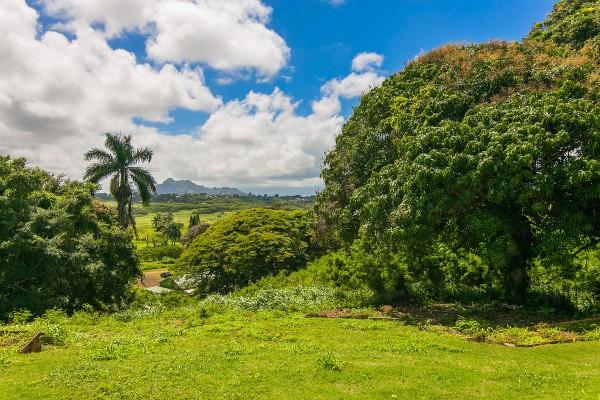 View of Kauai's Sleeping Giant