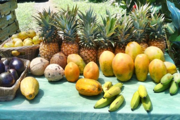 fruit table at the Twin Falls Farm Stand