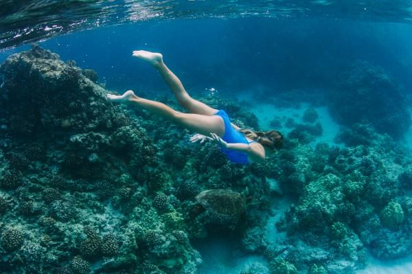 Explore the Big Island's Magnificent Coral Reefs, Kona Coast – Hawaii