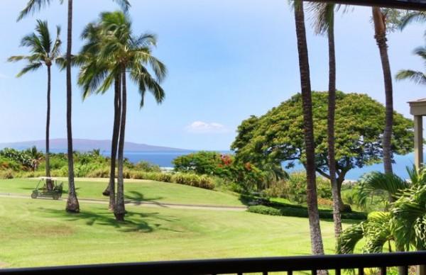 Wailea Ekolu Resort - a typical view