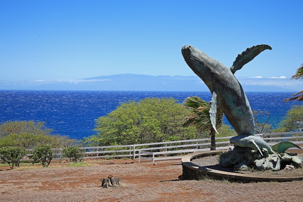 Puakea Bay Ranch oceanfront community