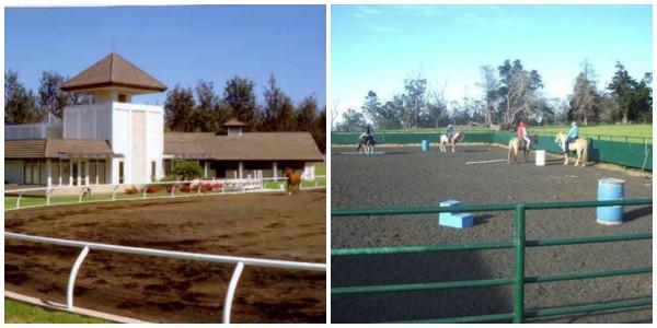 Riding arenas big island gated communities