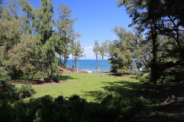 Almost oceanfront land for sale