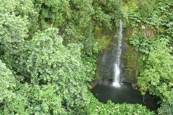 waterfall on 485 kohala property