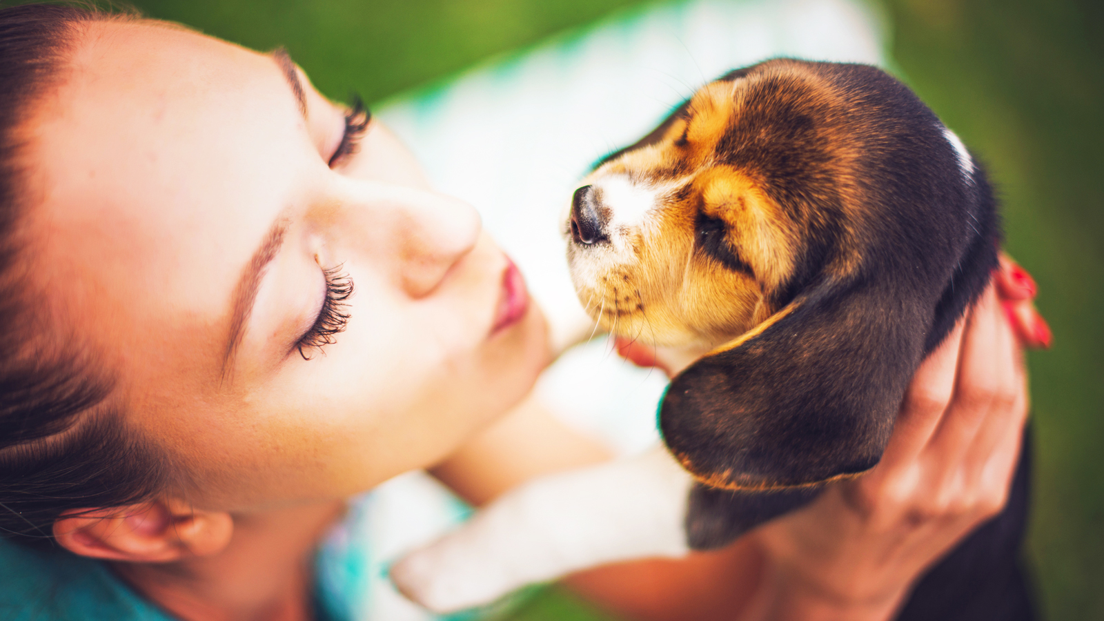 Moving Pets to Hawaii: Frequently Asked Questions (FAQ