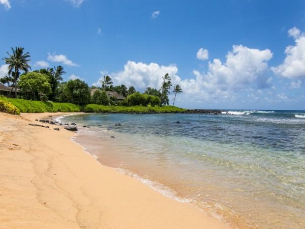 1309387_Baby-Beach_800x600