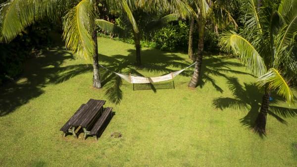 Country Life in Honolu