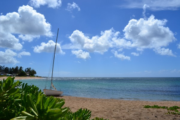 Army Beach - Haleiwa, HI