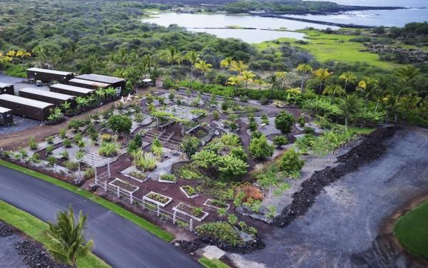 Organic Farm Ariel