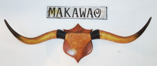 makawao long horns