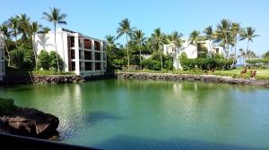 Mauna Lani Terrace 2