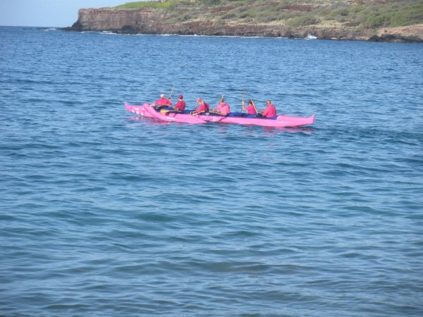 Pink Paddlers head back to Maui from Lana'i