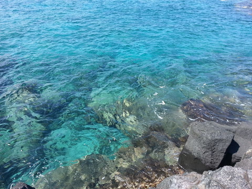 Crystal clear waters; perfect for spotting sea turtles and dolphins!