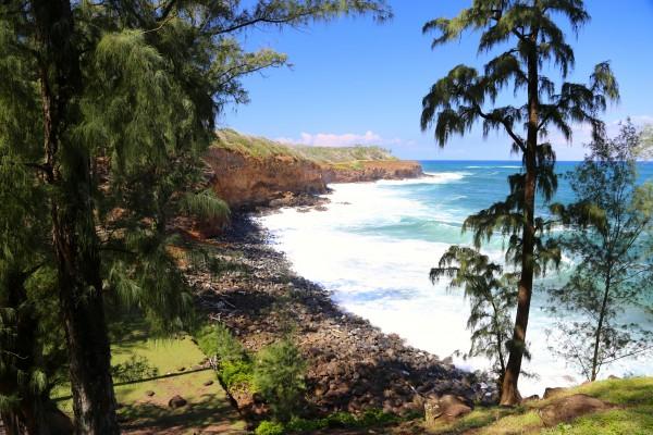 Oceanfront 50 acres for sale Kohala