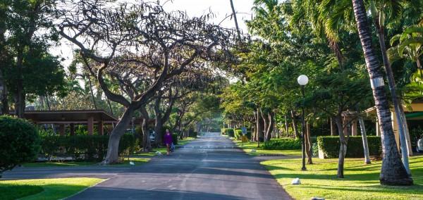 Puamana street