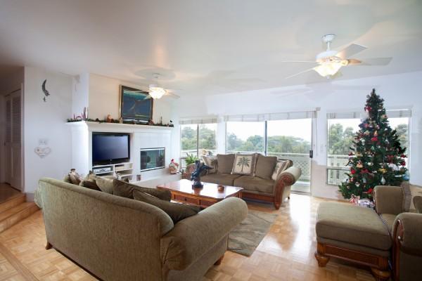 Opana Living room