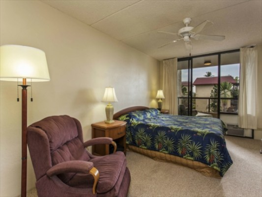 Main bedroom with private entry to wrap around lanai