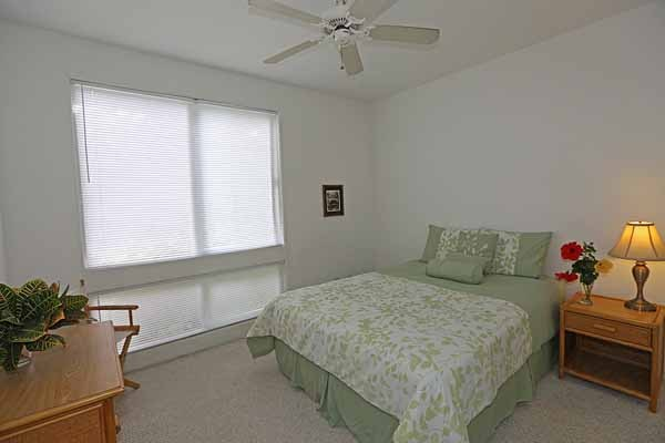 2nd bedroom - very light and bright