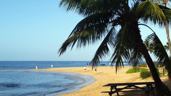Lori Decker - Poipu Beach Kauai Feb 2015