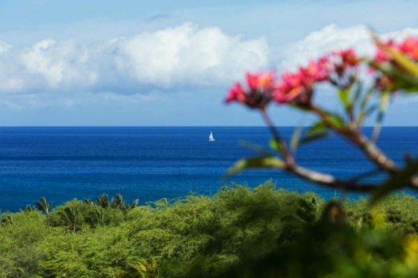 Ocean View from Mauna Kea Resort / MLS #282896
